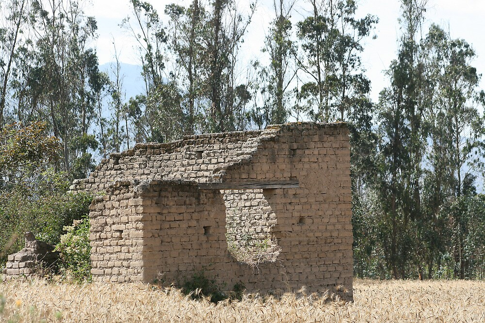 Demolished Farmhouse Overtaken by Plants by rhamm