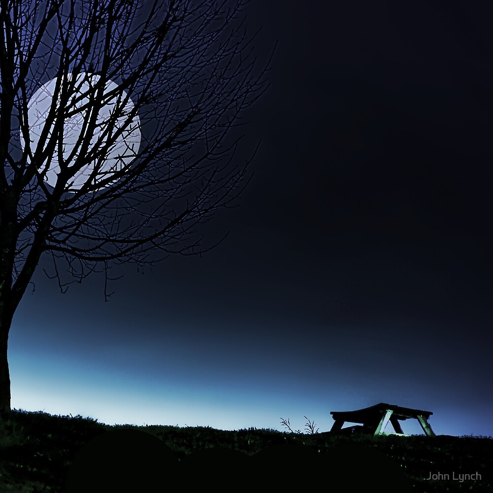 Moonlit Bench by John Lynch