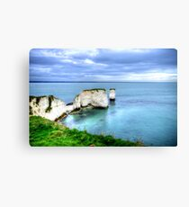Old Harrys Rocks Canvas Print