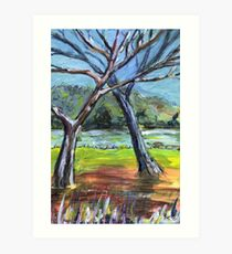 Sketching Trees Art Print