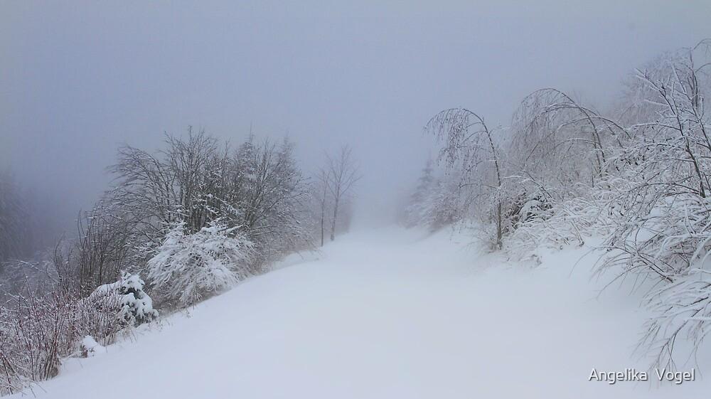 A foggy Day by Angelika  Vogel
