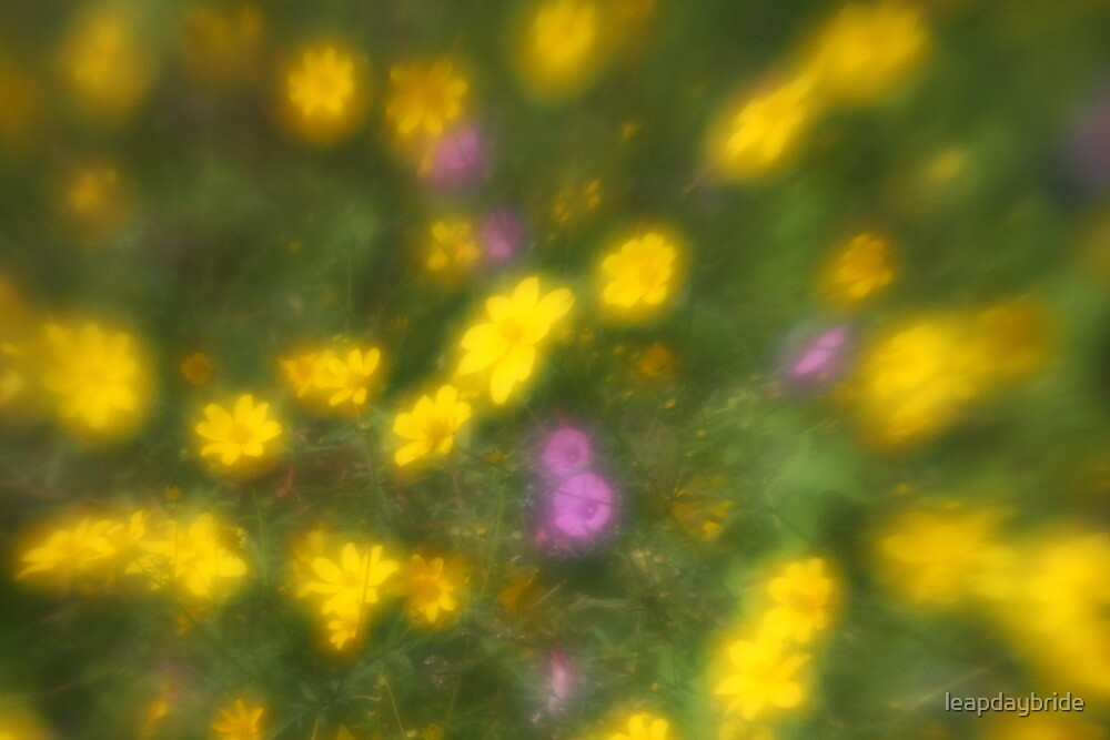 Yellow Flowers by leapdaybride