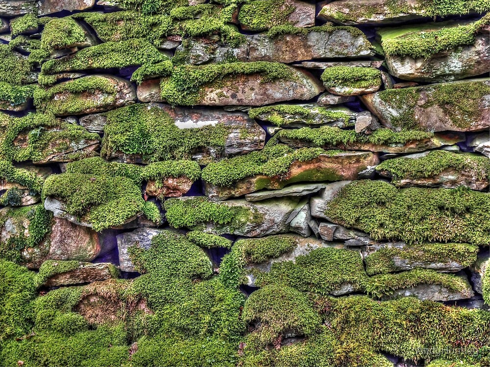 Dry Stone Wall by AndyHuntley