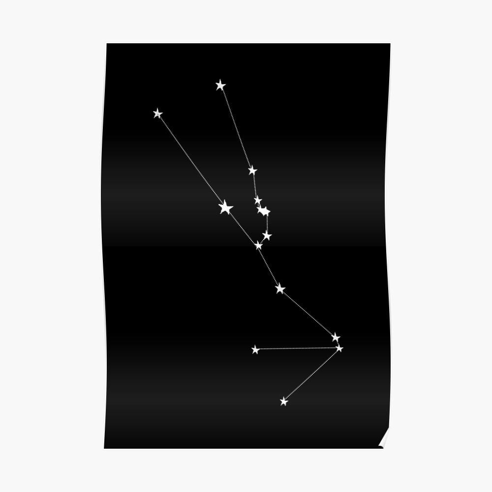 Sternbild | Stier Poster