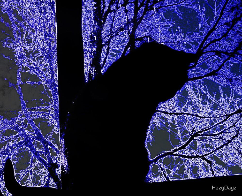Ice Cat by HazyDayz