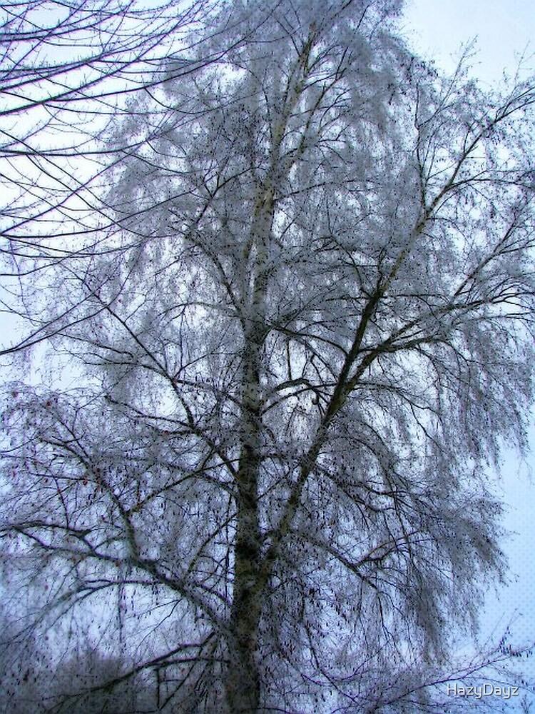 Birch Iced by HazyDayz