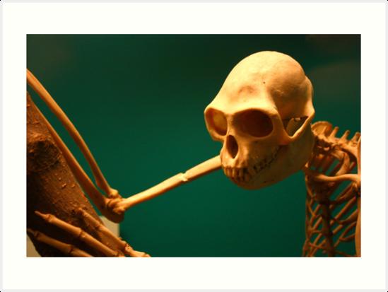 Moloch Gibbon 2 by Daniel Owens