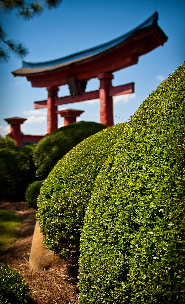 The Rolling Bushes of the Torii Gate by Scott Smith