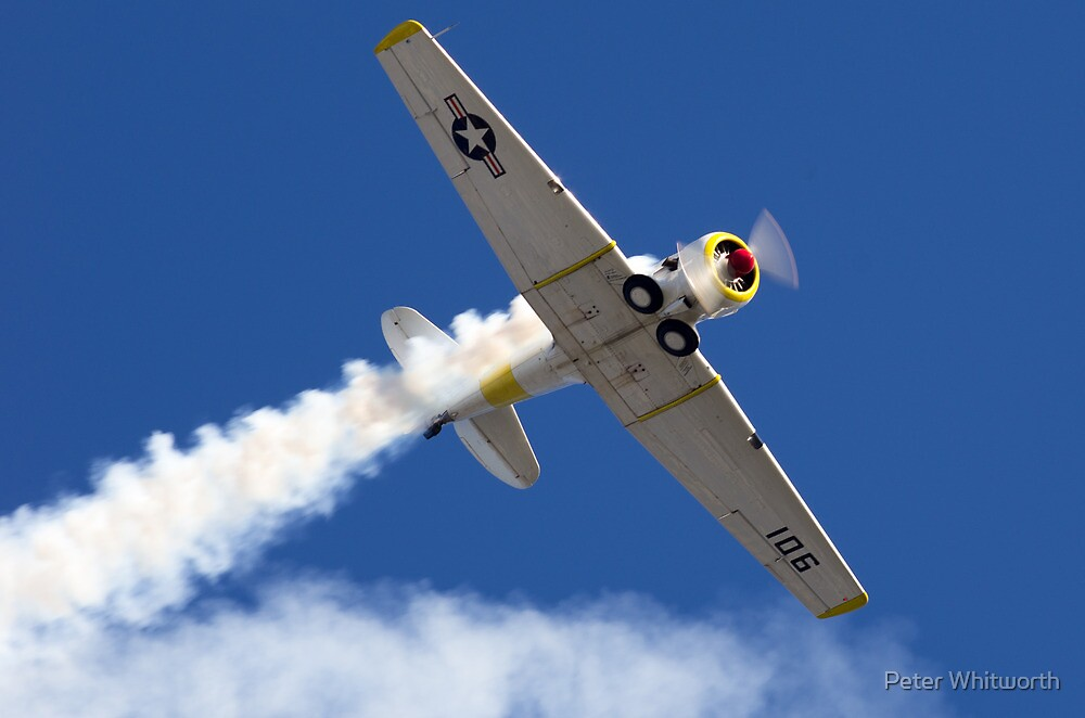 T6 Texan Display  by Peter Whitworth