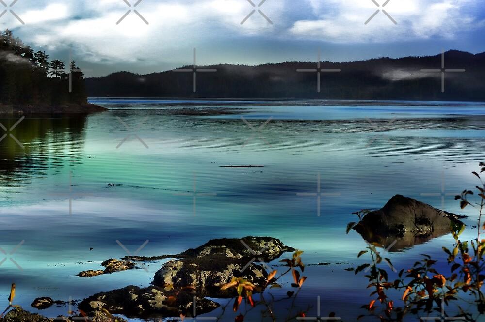Along The Shore by Gail Bridger