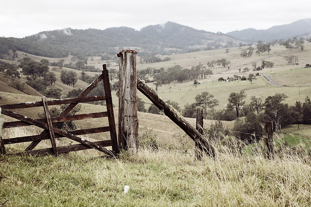 Old Wooden Gate by Jill Patterson