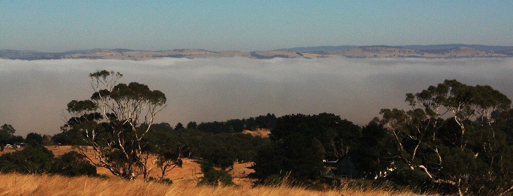 Fog west of Kilmore Gap by aswavic2009