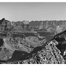 Grand Canyon National Park #3 - Arizona USA by Edith Reynolds