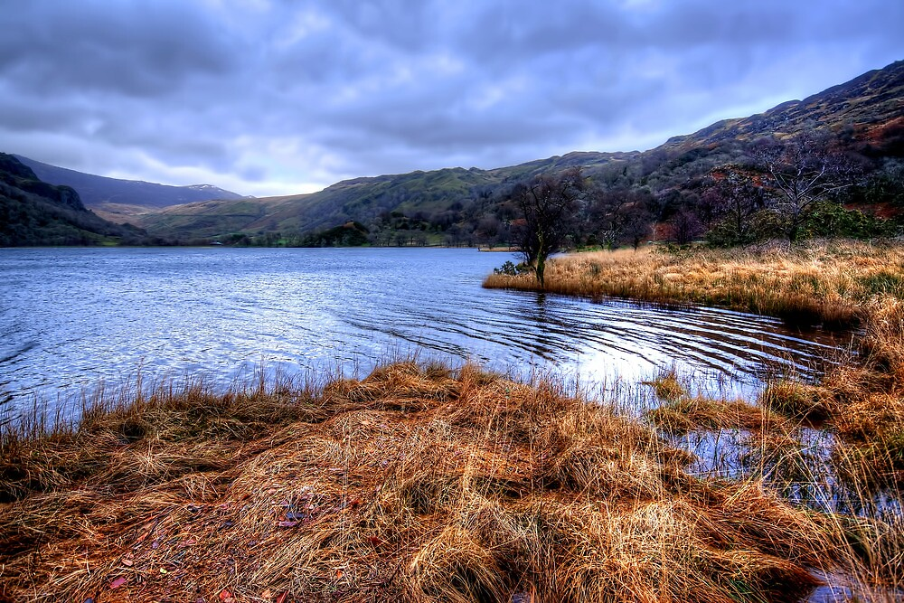 Llyn Cwellyn by Stephen Smith