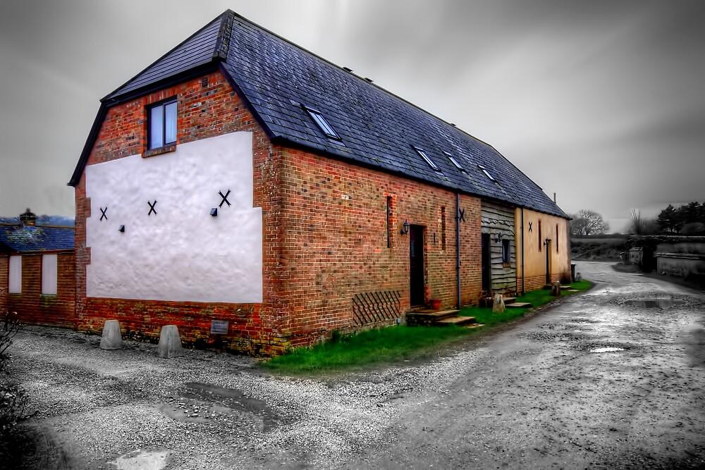 Bere Regis Cottage, Dorset by Stephen Smith