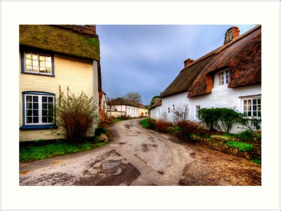 Bere Regis, Dorset by Stephen Smith