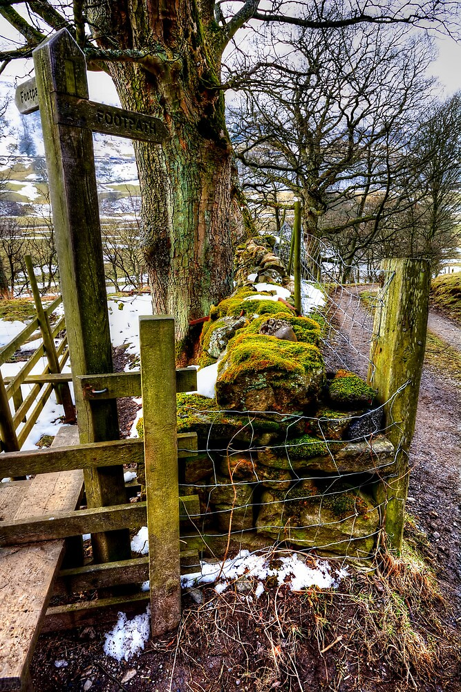 Swaledale Footpath by Stephen Smith