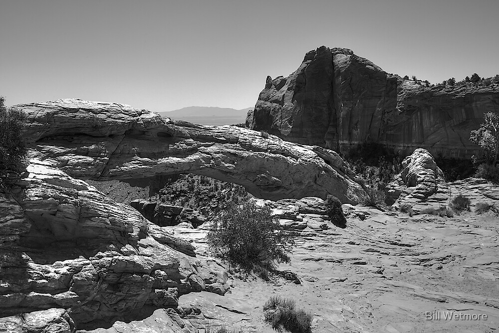 Mesa Arch on the Island in the Sky by Bill Wetmore