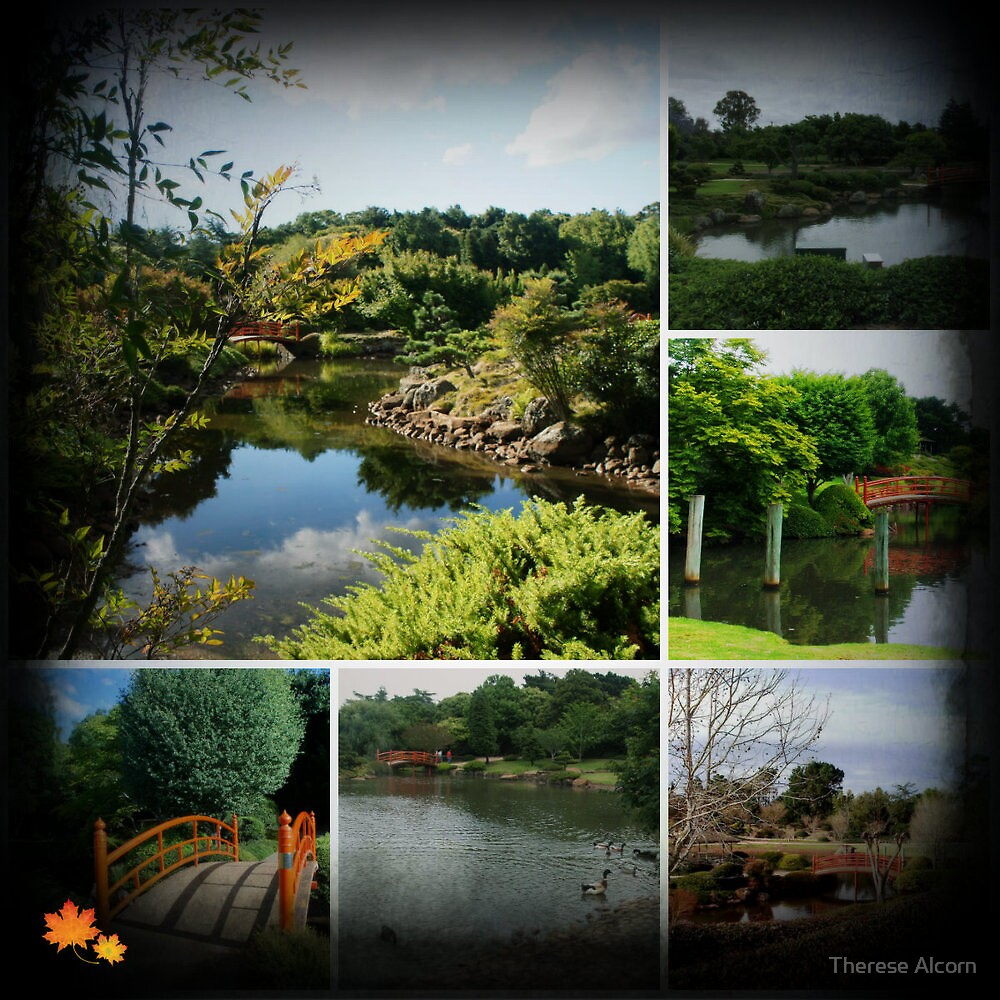 Collage - Japanese Gardens, Toowoomba by Therese Alcorn