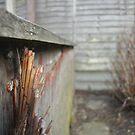 Bamboo  by Whiteside-Art