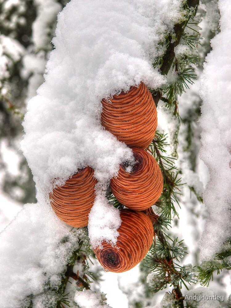 Snow Cones by AndyHuntley