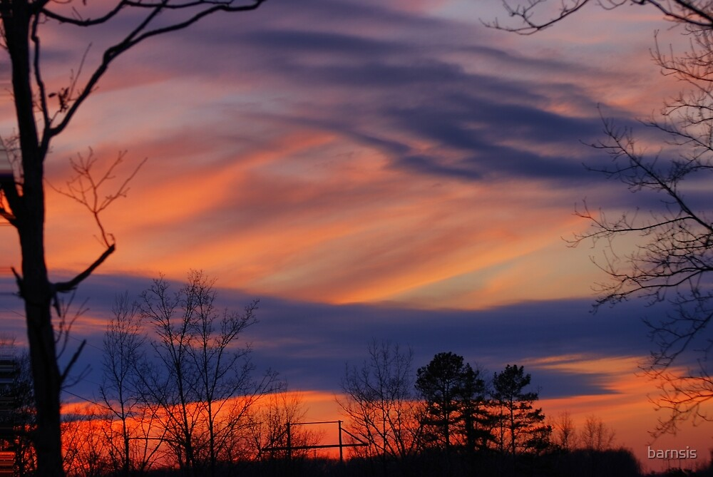 Natures Paintbrush  by barnsis
