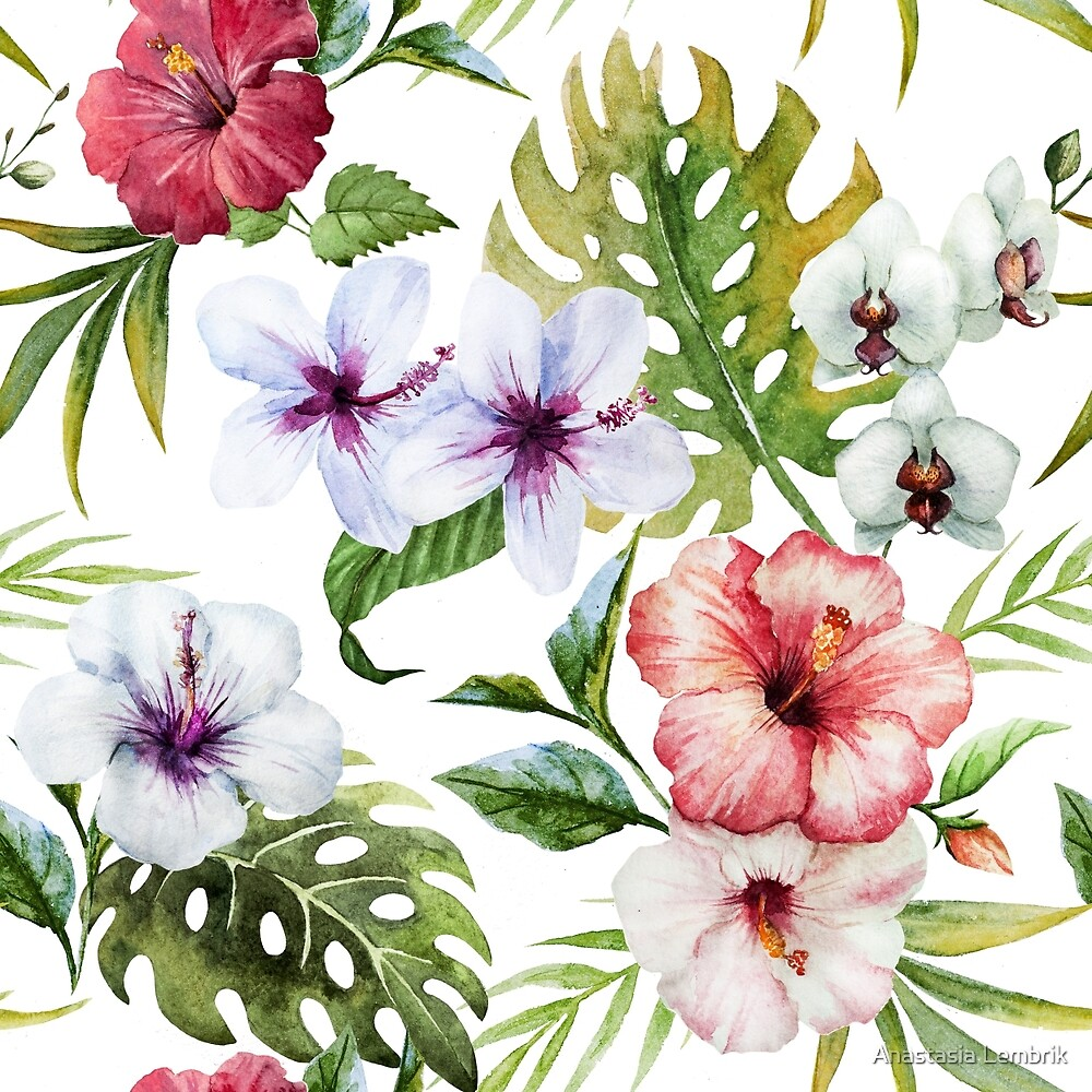 tropical pattern with hibiscus flower by Anastasia Lembrik