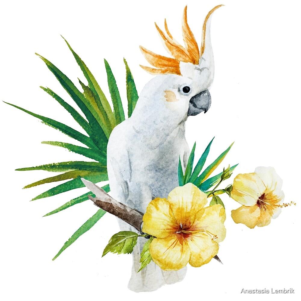 watercolor print white parrot flower hibiscus by Anastasia Lembrik
