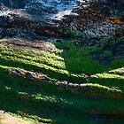Portreath Cliff Texture by Jono Hewitt