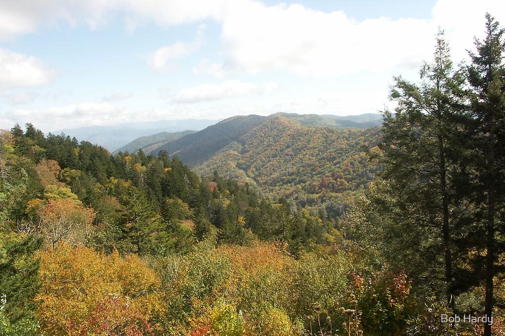 Great Smoky Mountains by Bob Hardy