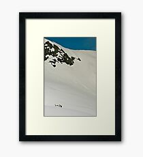 The Fox and Franz Joseph Glaciers Framed Print