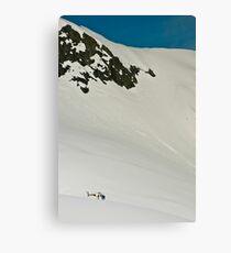 The Fox and Franz Joseph Glaciers Canvas Print