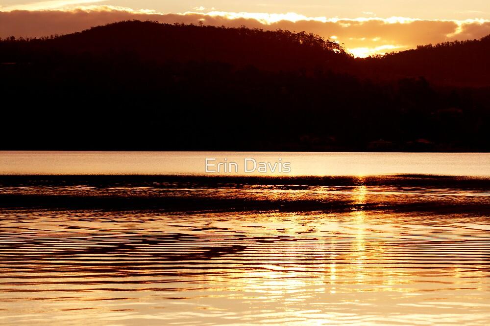 The Golden Hour ... by Erin Davis