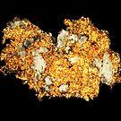 It Does Glitter (Gold) by Stephanie Bateman-Graham