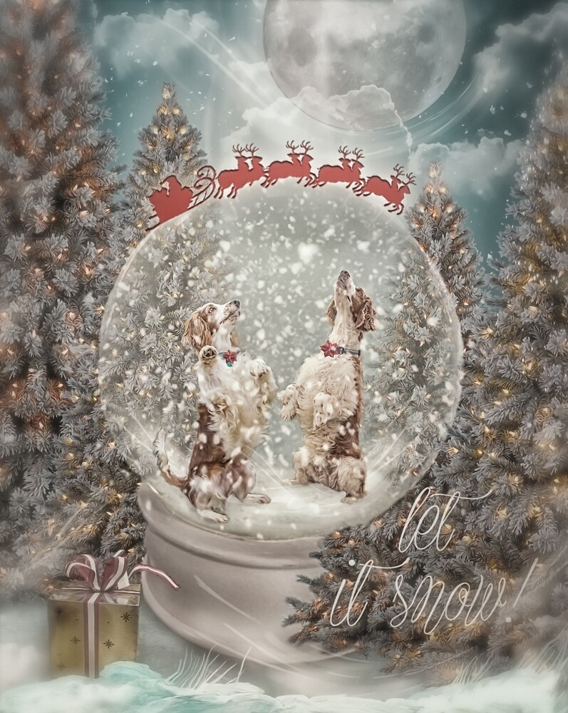 Welshies in a snow globe by KibblyWibbly