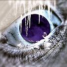 Eye Of Knowing by DreamCatcher/ Kyrah