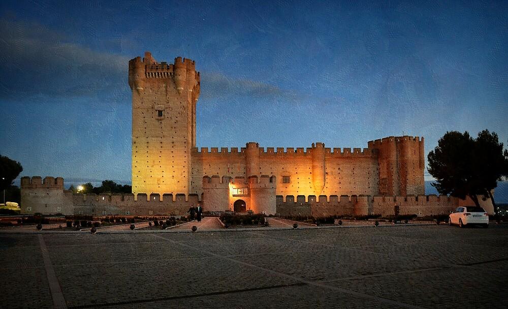 El castillo de la Mota ~ Medina del Campo by rentedochan