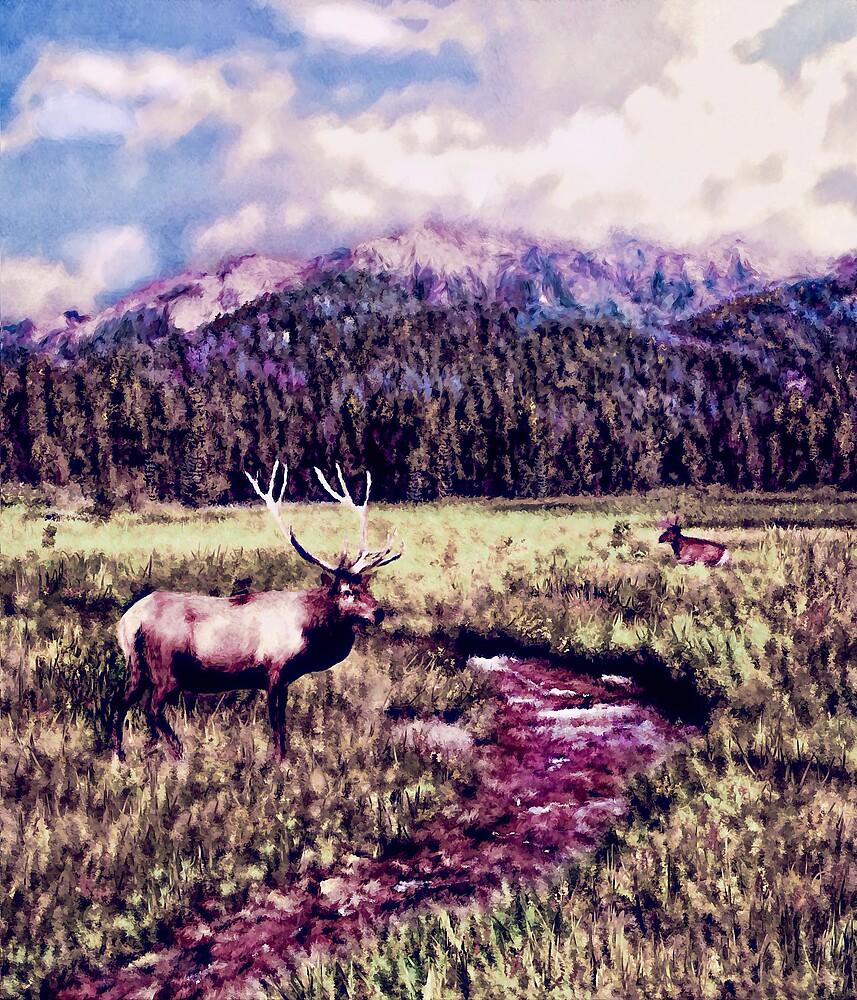 Summer Meadow by Wib Dawson