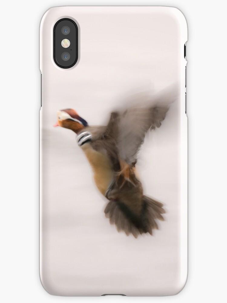 Mandarin bird in flight by Steve Björklund