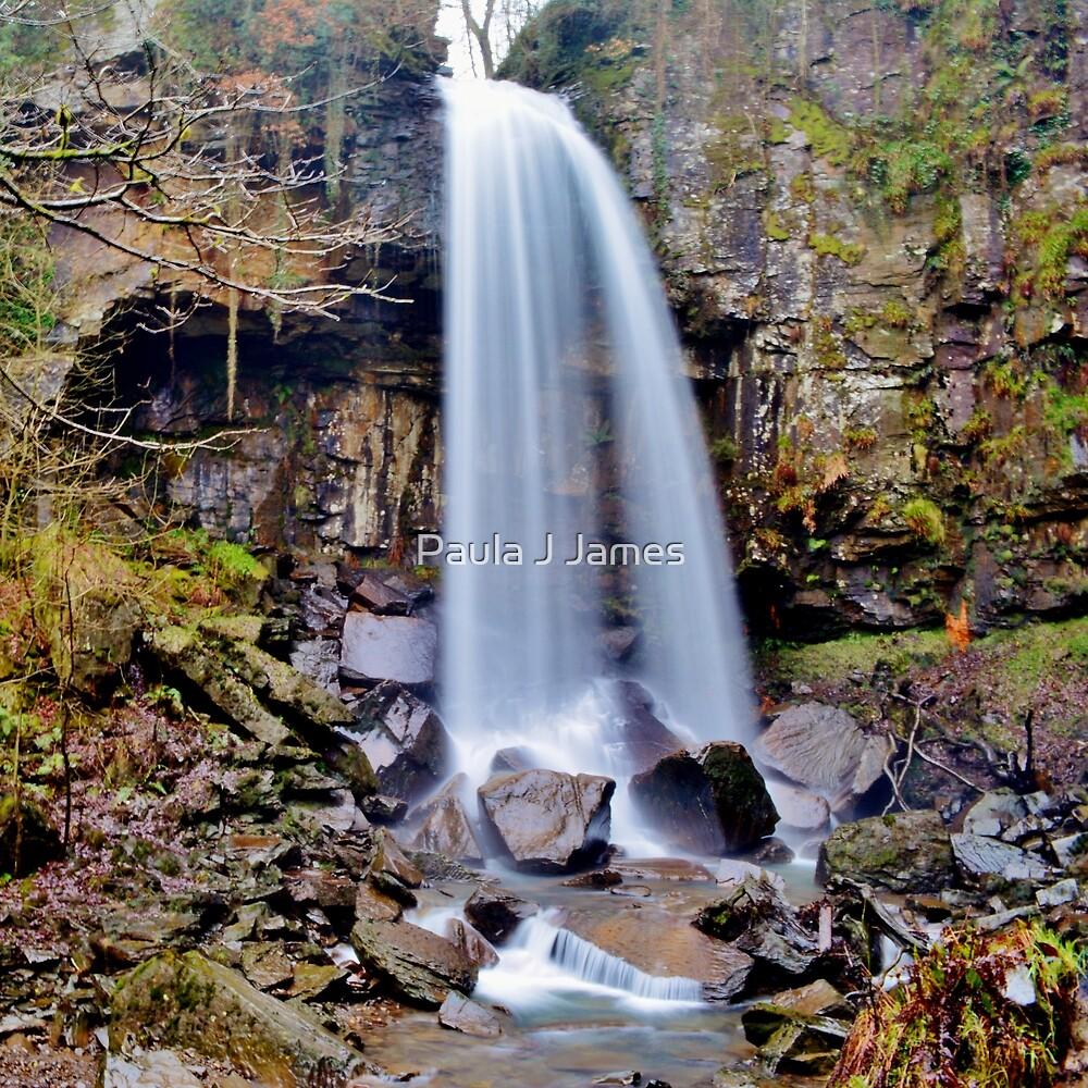 Melincourt Falls by Paula J James