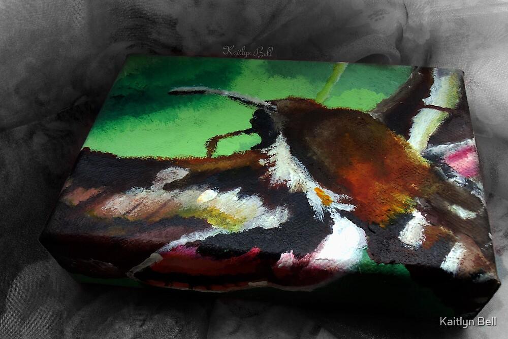 Hummingbird Moth by Kaitlyn Bell