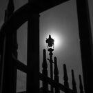 Streetlight Silhouette by Jono Hewitt
