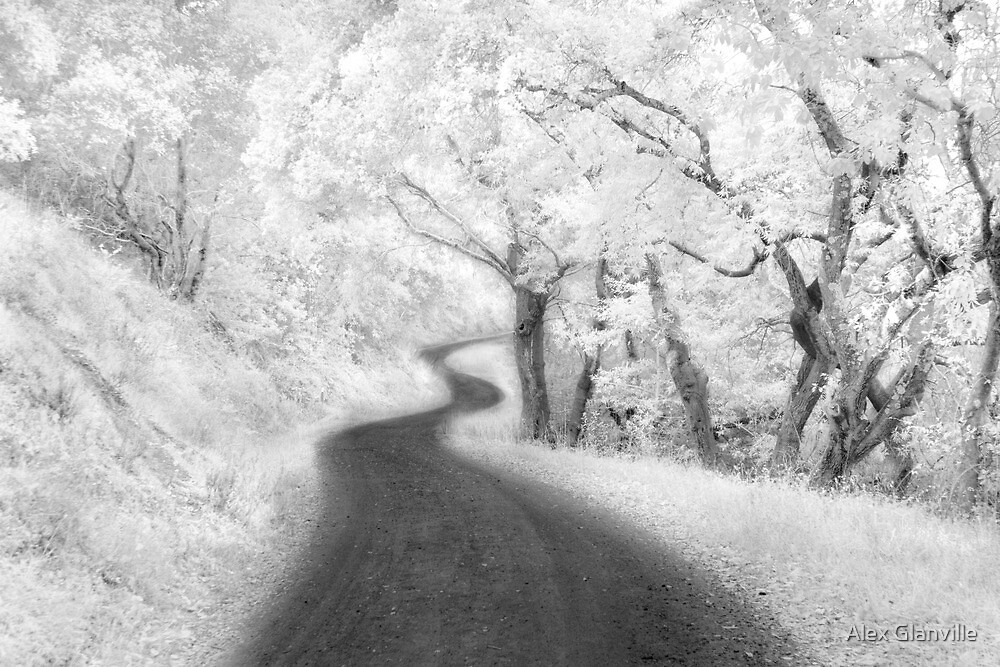 Road Less Traveled by Alex Glanville