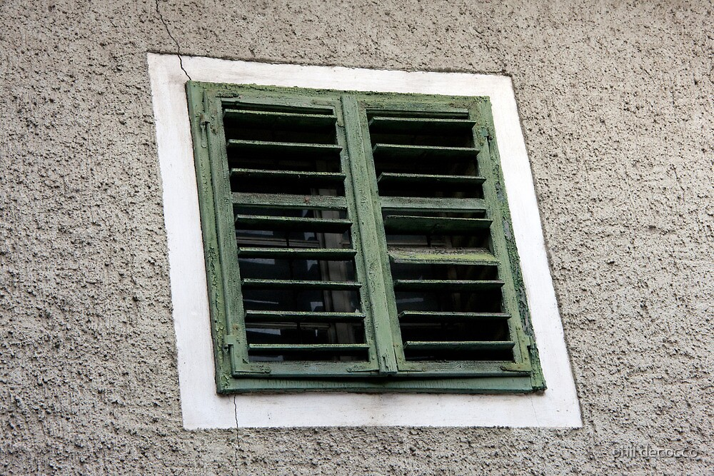 Cracked Paint Shutters by phil decocco