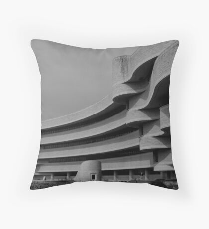 Waves B&W Throw Pillow