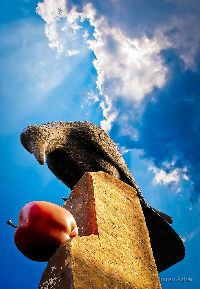 Raven Diet by Imran Azhar