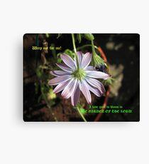 Farewell, Pretty One! Bereavement Card Leinwanddruck