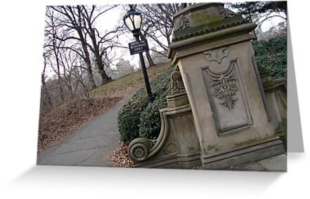 Central Park in winter by DebWinfield
