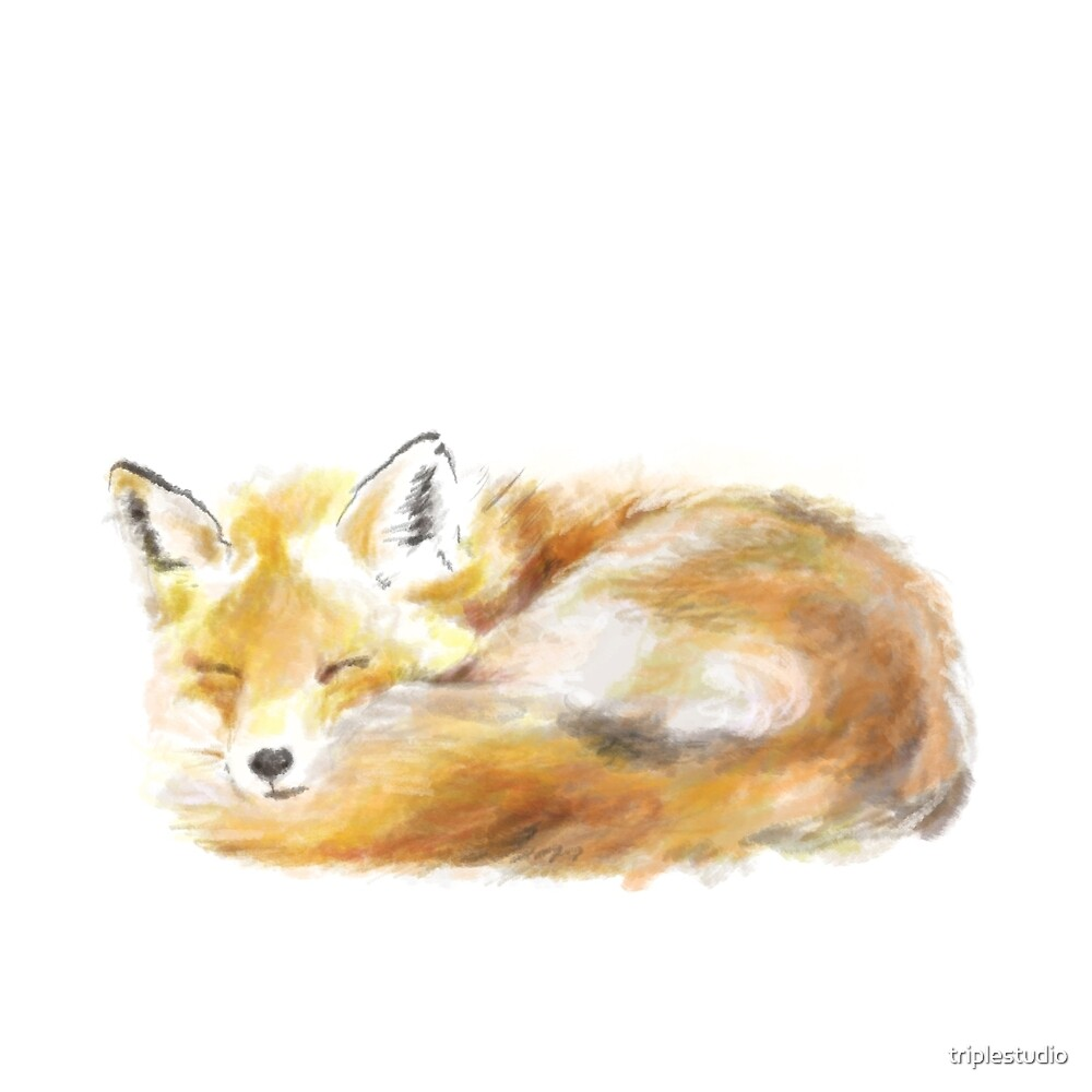 That Sleepy Fox by triplestudio