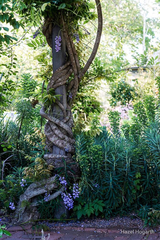 0256 Jenny's Garden by Hazel Hogarth